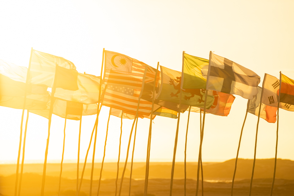 Flags in the sun