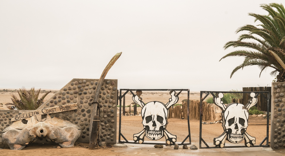 I wonder why it's called the Skeleton Coast?